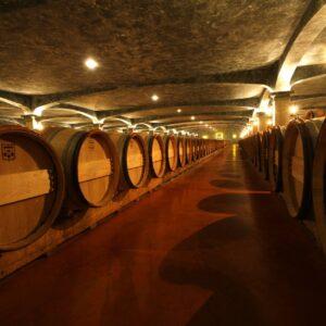 Château Smith Haut Lafitte – Chai à barriques des vins rouges