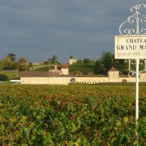 saint emilion grand cru bon vin