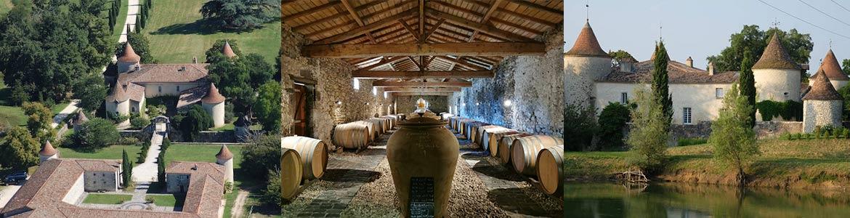 vin bordeaux biodynamie